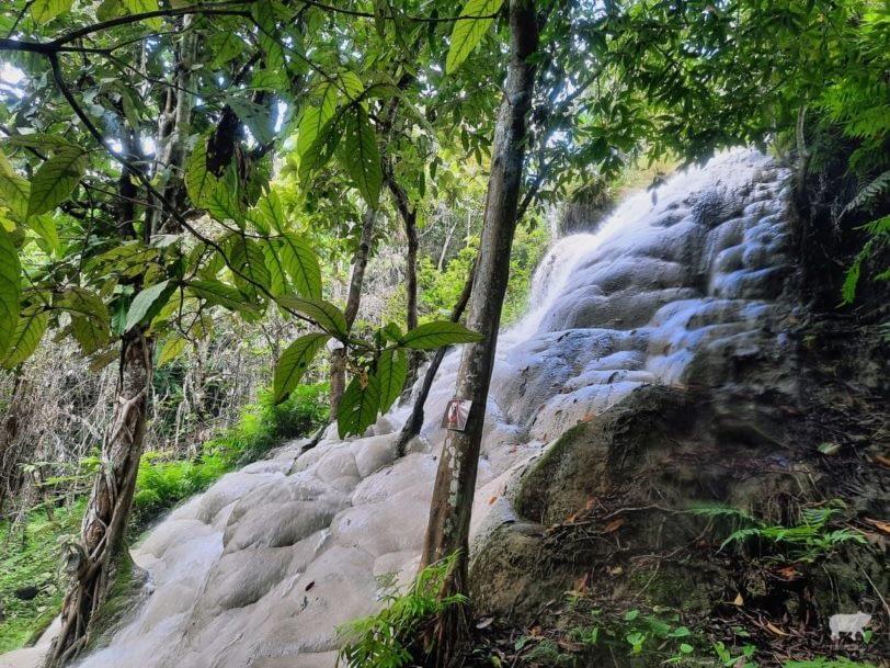 Bua Thong Sticky Waterfalls